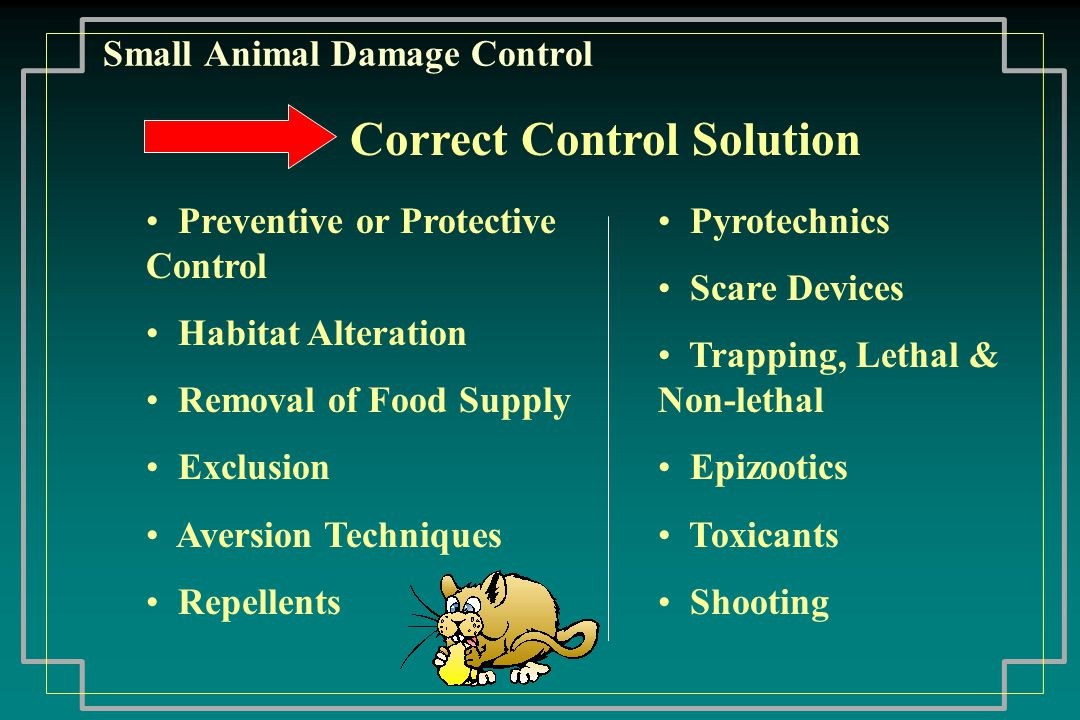 Small Animal Damage Control Bird Control Urban sanitation problems - pigeons, sparrows, starlings, and increasingly geese Control: Habitat manipulation Aversion Exclusion Trapping & baiting