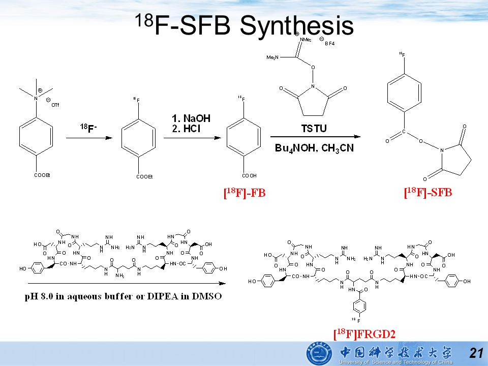 21 18 F-SFB Synthesis