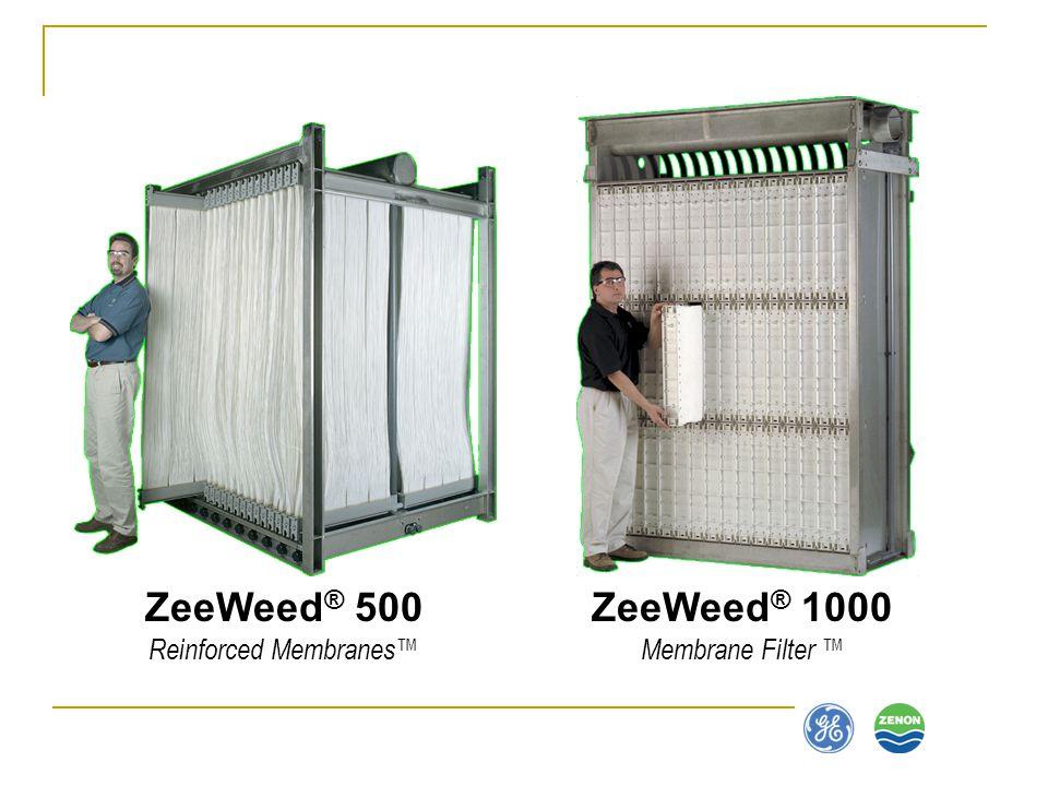 ZeeWeed ® 1000 Membrane Filter ZeeWeed ® 500 Reinforced Membranes