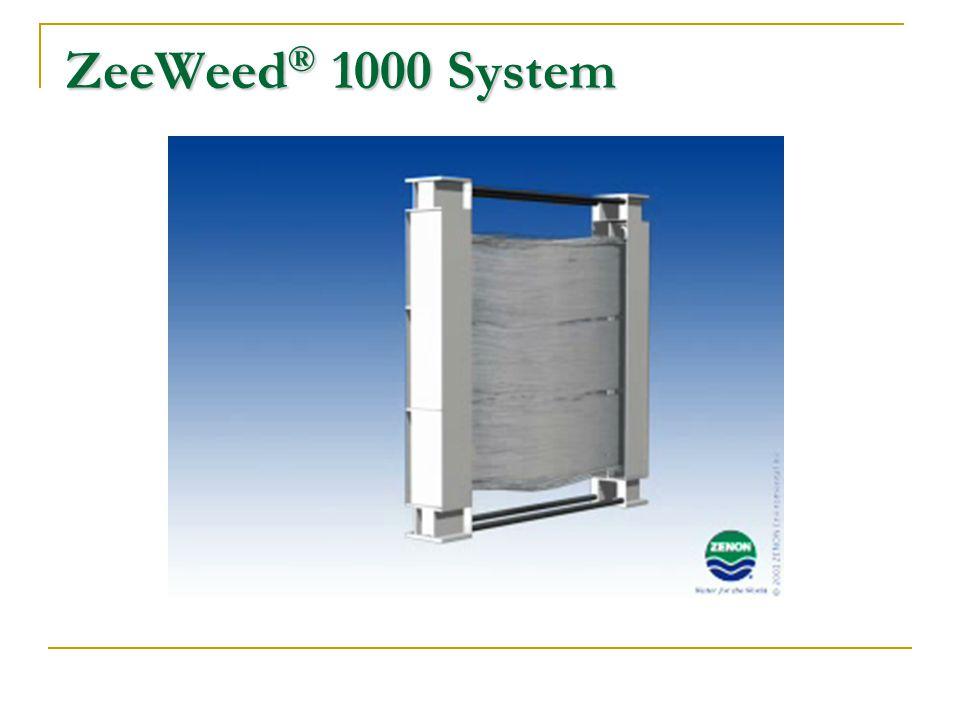 ZeeWeed ® 1000 System