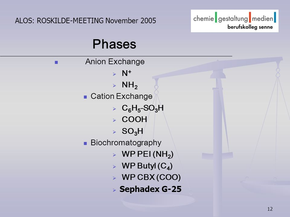 12 ALOS: ROSKILDE-MEETING November 2005 Anion Exchange N + NH 2 Cation Exchange C 6 H 5 -SO 3 H COOH SO 3 H Biochromatography WP PEI (NH 2 ) WP Butyl