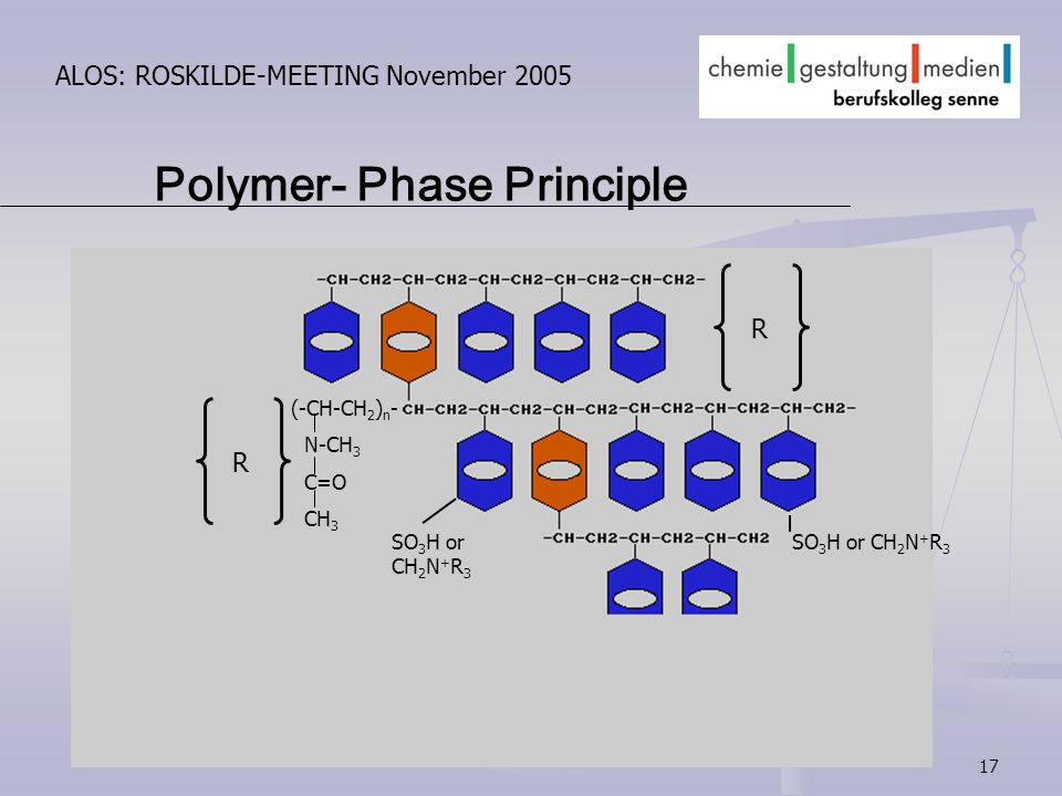 17 ALOS: ROSKILDE-MEETING November 2005 Polymer- Phase Principle (-CH-CH 2 ) n - N-CH 3 C=O CH 3 R R SO 3 H or CH 2 N + R 3