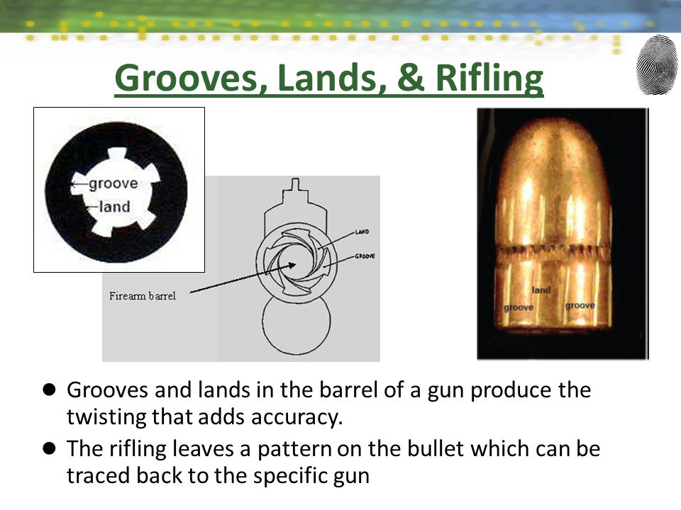 Grooves, Lands, & Rifling Grooves and lands in the barrel of a gun produce the twisting that adds accuracy. The rifling leaves a pattern on the bullet