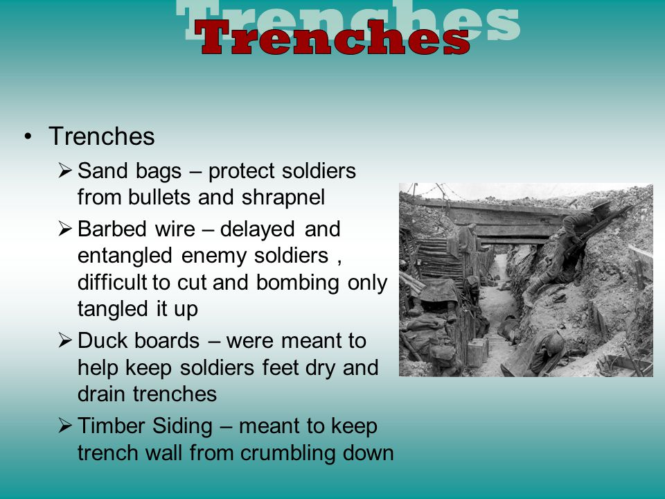 Reasons for the Trenches –Bothe the Allies and the Central Powers realized they could stop an enemy attack by digging trenches Were a permanent feature of the war Trench lines changed very little in 3 years Create a stalemate The war becomes stagnant Machine gun fire from trenches makes crossing No Mans Land near impossible
