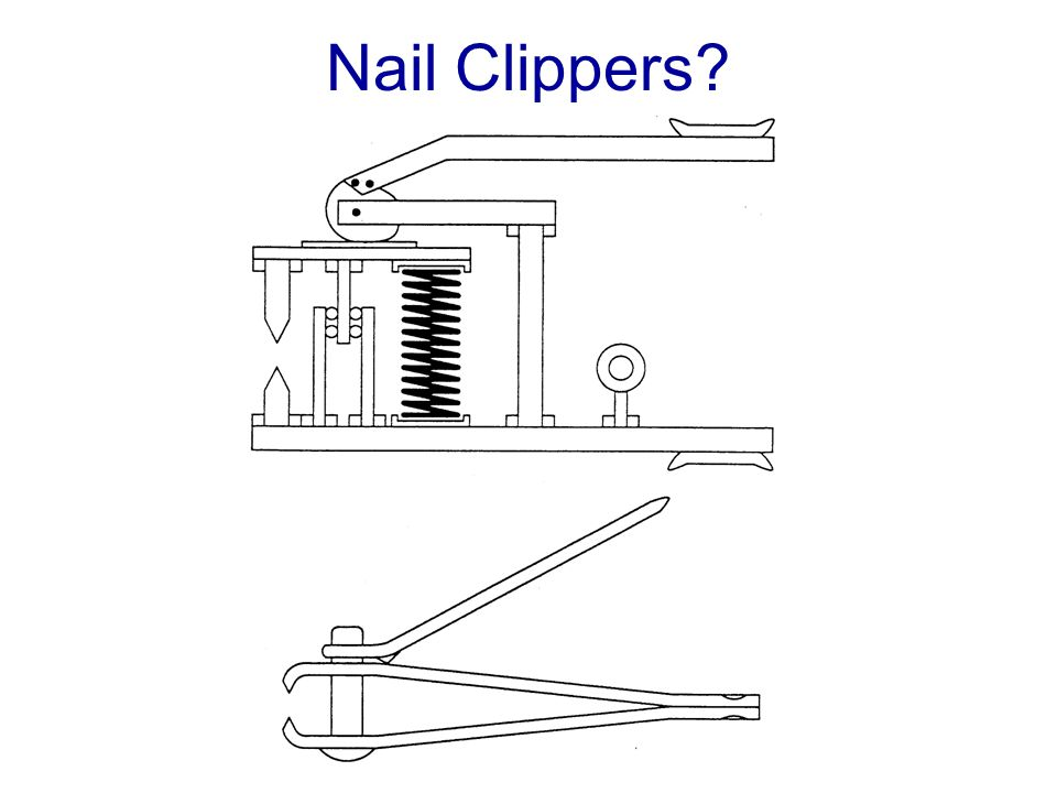Nail Clippers?