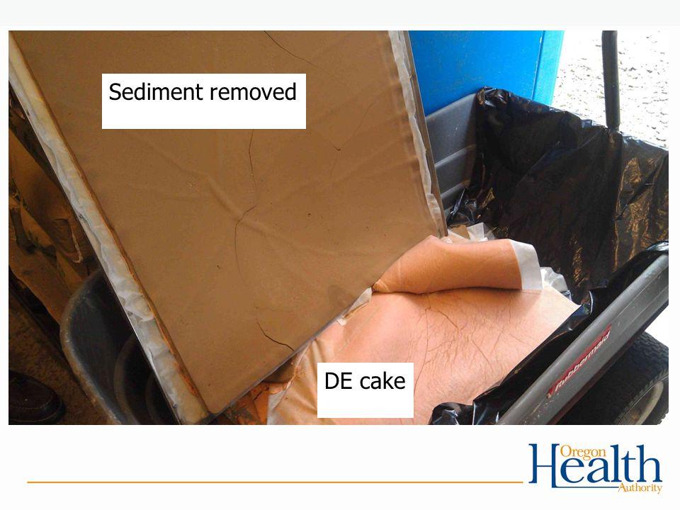 DE cake Sediment removed