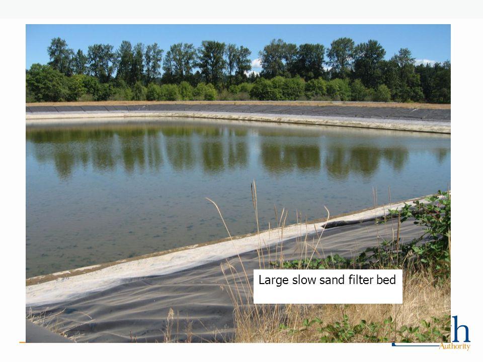 Large slow sand filter bed