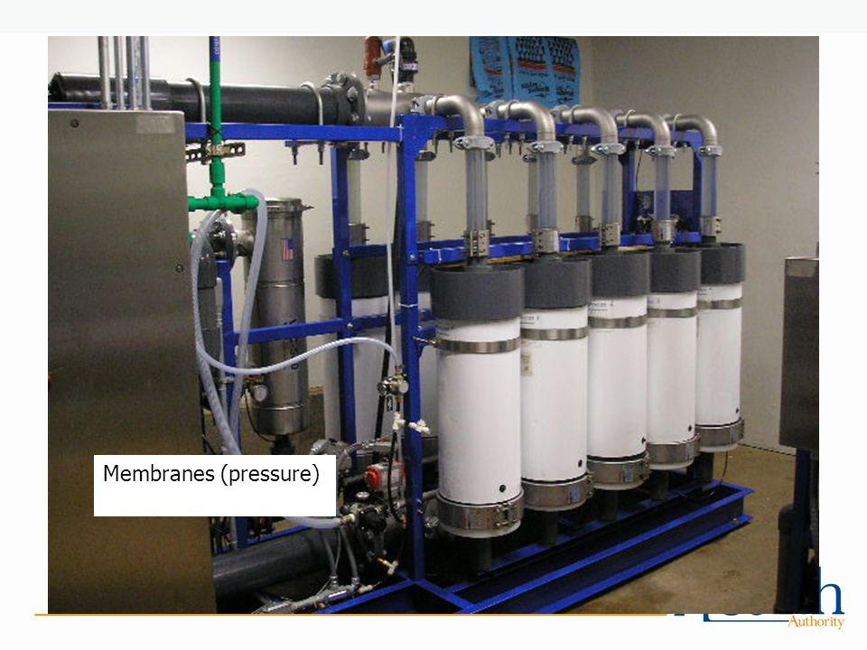 Membranes (pressure)