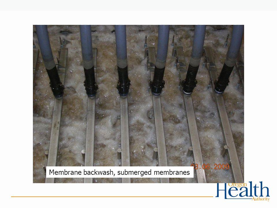 Membrane backwash, submerged membranes