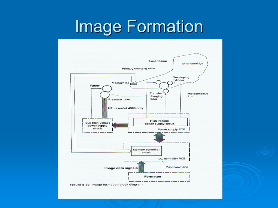 Image Formation
