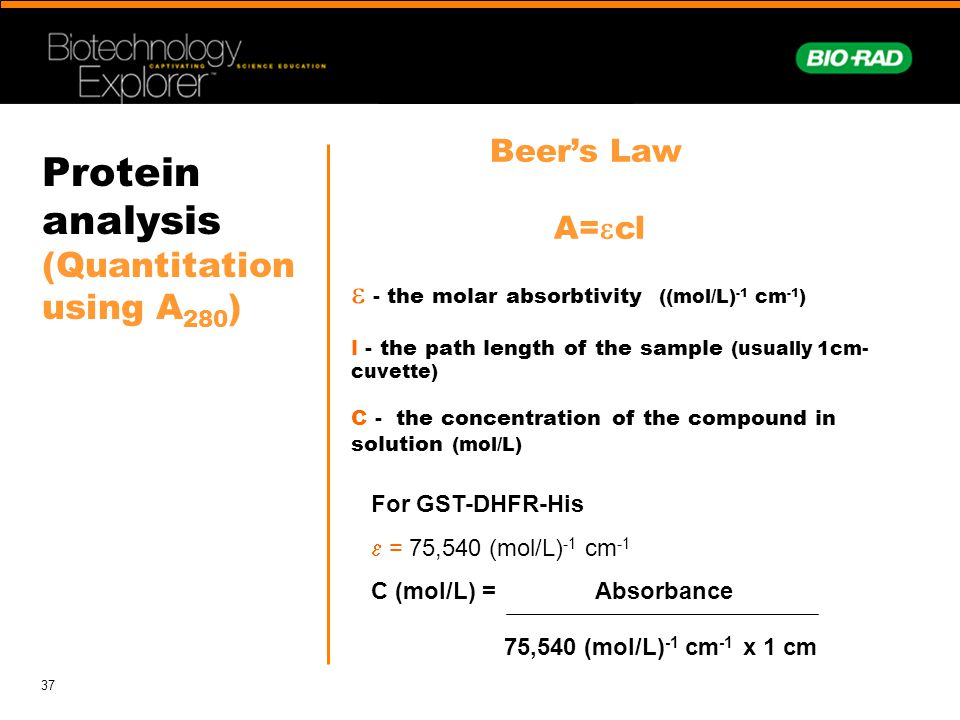 37 Beers Law A= cl - the molar absorbtivity ((mol/L) -1 cm -1 ) l - the path length of the sample (usually 1cm- cuvette) C - the concentration of the