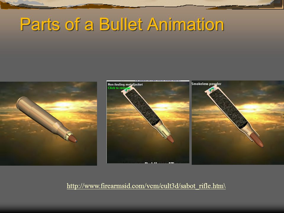 Parts of a Bullet Animation http://www.firearmsid.com/vcm/cult3d/sabot_rifle.htm\