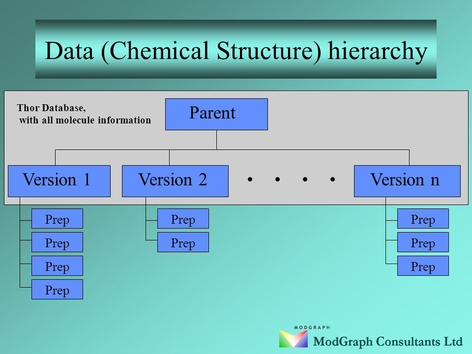 Data (Chemical Structure) hierarchy Data stored for each chemical entity are organized on a hierarchical basis with each entity expressed in terms of Parent, Version and Preparation(Oracle only).