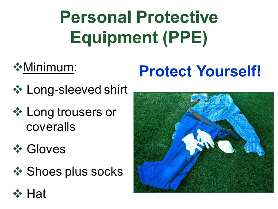 Personal Protective Equipment (PPE) Minimum: Long-sleeved shirt Long trousers or coveralls Gloves Shoes plus socks Hat Protect Yourself!