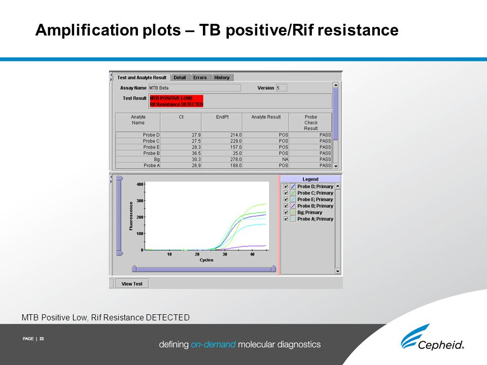PAGE | 23 Amplification plots – TB positive/Rif resistance MTB Positive Low, Rif Resistance DETECTED