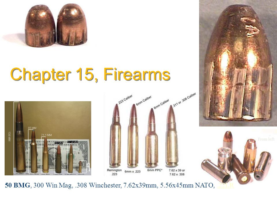 From left 50 BMG, 300 Win Mag,.308 Winchester, 7.62x39mm, 5.56x45mm NATO,.22LR.22LR