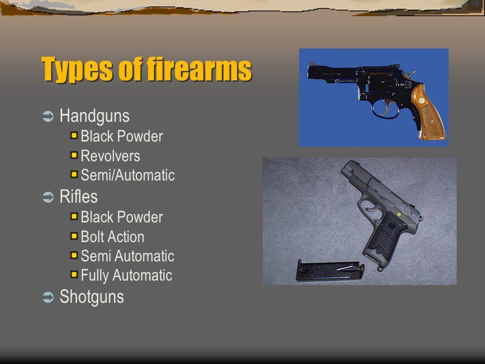 Types of firearms Handguns Black Powder Revolvers Semi/Automatic Rifles Black Powder Bolt Action Semi Automatic Fully Automatic Shotguns