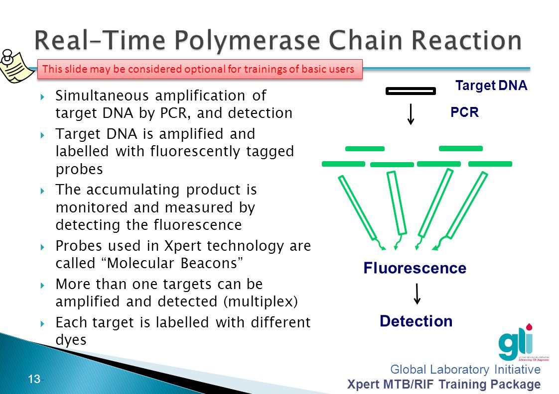 Global Laboratory Initiative Xpert MTB/RIF Training Package -13- Target DNA PCR Fluorescence Detection This slide may be considered optional for train