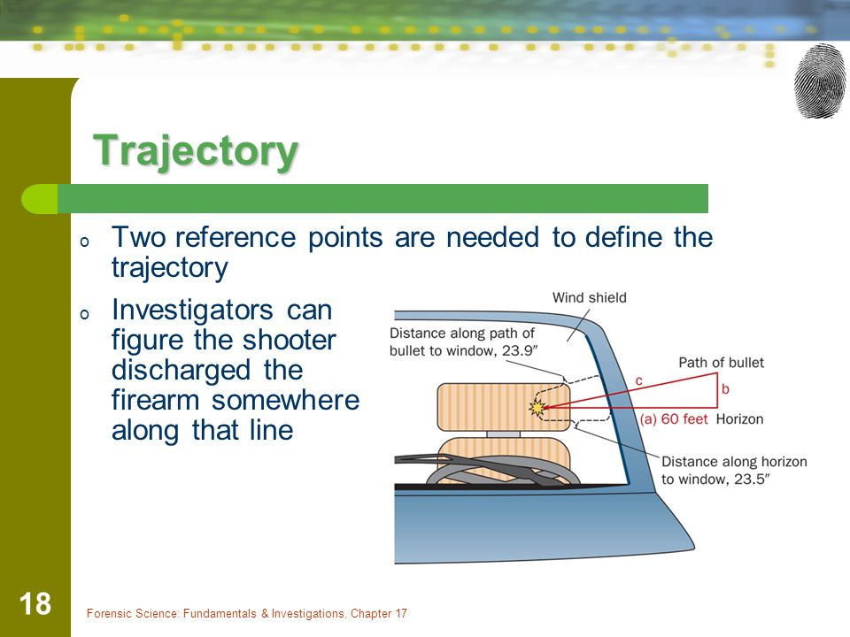 Forensic Science: Fundamentals & Investigations, Chapter 17 18 Trajectory o Two reference points are needed to define the trajectory o Investigators c