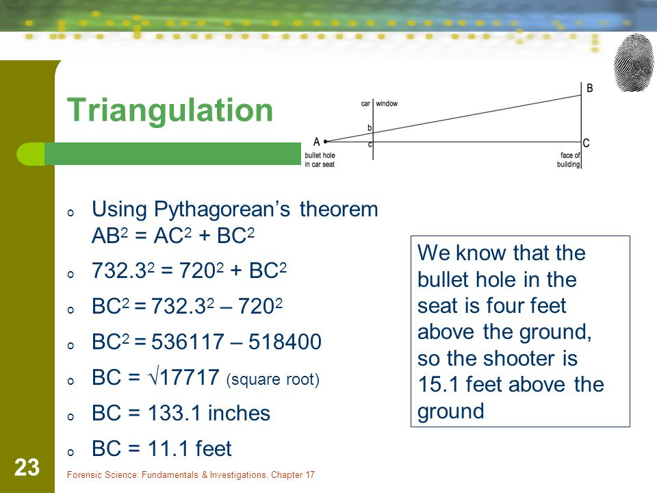 Forensic Science: Fundamentals & Investigations, Chapter 17 23 Triangulation o Using Pythagoreans theorem AB 2 = AC 2 + BC 2 o 732.3 2 = 720 2 + BC 2