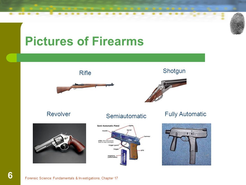 Pictures of Firearms Forensic Science: Fundamentals & Investigations, Chapter 17 6 Rifle Shotgun Revolver Semiautomatic Fully Automatic