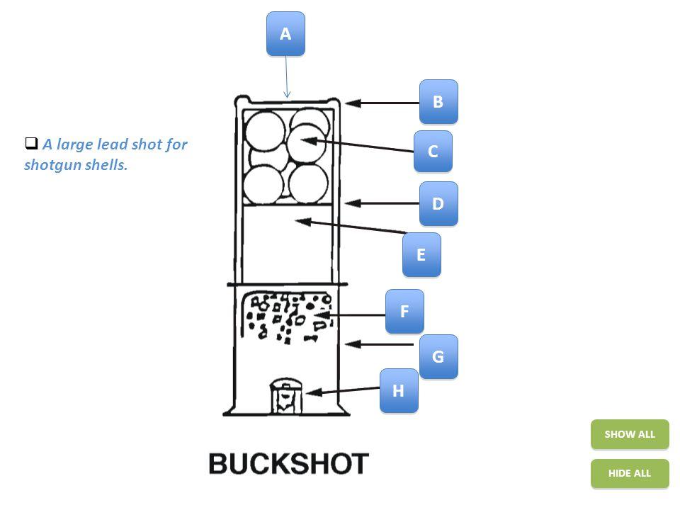 Shotgun Cartridge SHOW ALL HIDE ALL A A B B C C D D E E F F G G H H A large lead shot for shotgun shells.