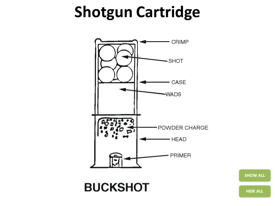 Shotgun Cartridge SHOW ALL HIDE ALL