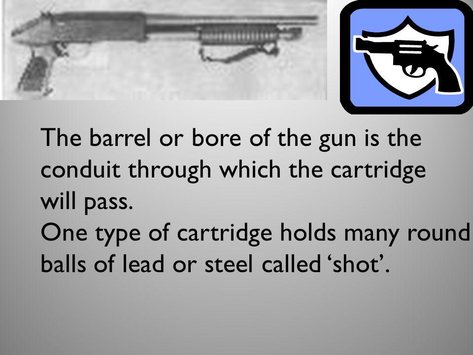 The barrel or bore of the gun is the conduit through which the cartridge will pass.