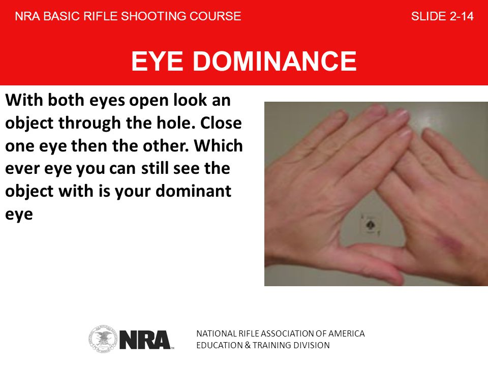 NATIONAL RIFLE ASSOCIATION OF AMERICA EDUCATION & TRAINING DIVISION NRA BASIC RIFLE SHOOTING COURSE SLIDE 2-14 EYE DOMINANCE With both eyes open look an object through the hole.