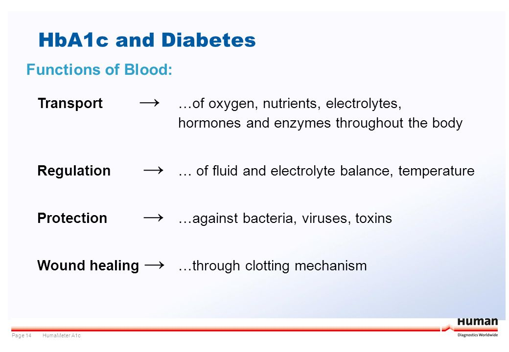 HumaMeter A1cPage 14 HbA1c and Diabetes Functions of Blood: Transport …of oxygen, nutrients, electrolytes, hormones and enzymes throughout the body Re