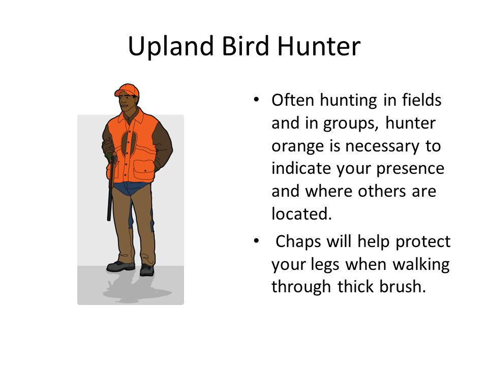 Upland Bird Hunter Often hunting in fields and in groups, hunter orange is necessary to indicate your presence and where others are located. Chaps wil