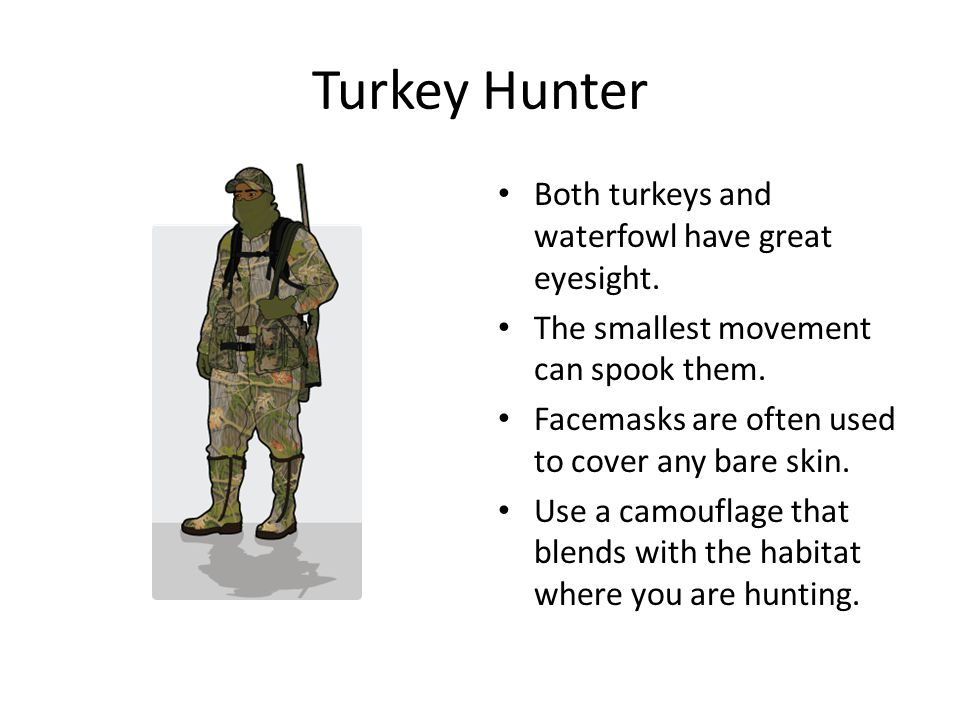 Turkey Hunter Both turkeys and waterfowl have great eyesight. The smallest movement can spook them. Facemasks are often used to cover any bare skin. U