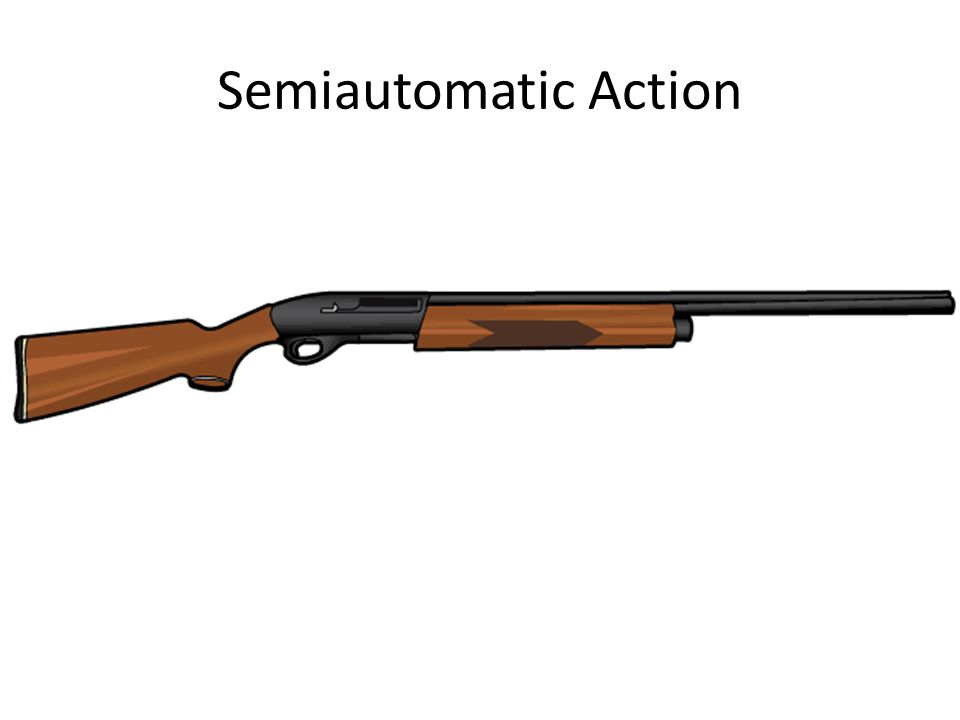 Semiautomatic Action