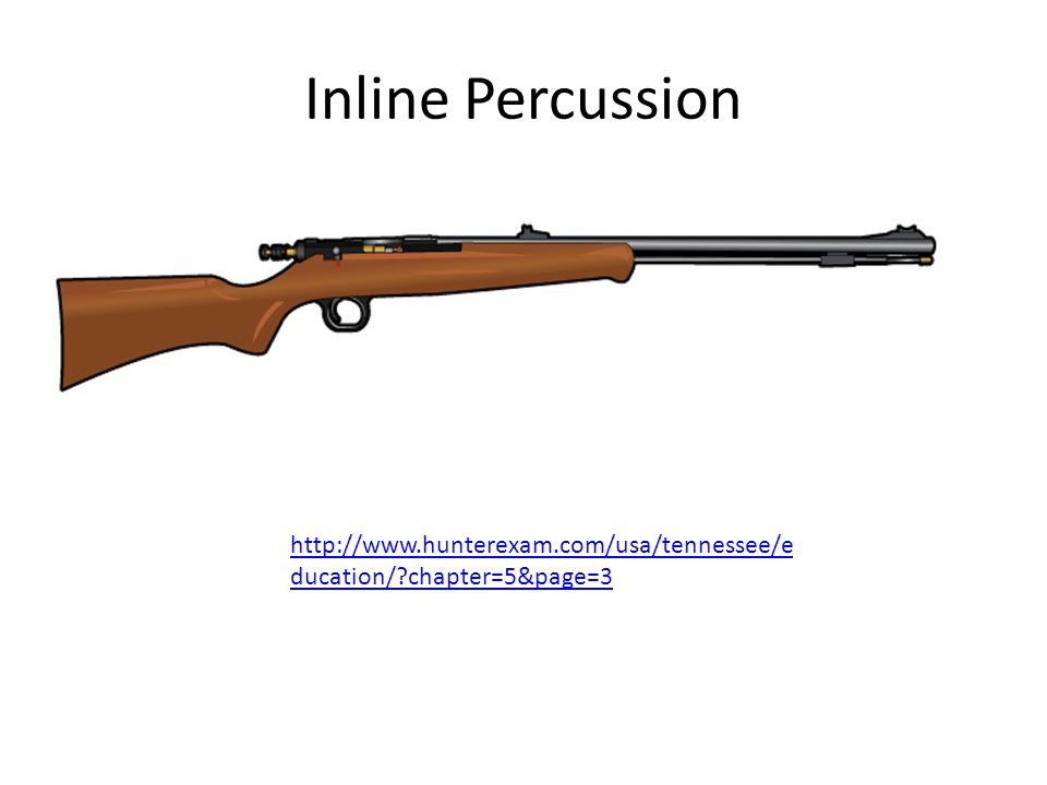 Inline Percussion http://www.hunterexam.com/usa/tennessee/e ducation/?chapter=5&page=3