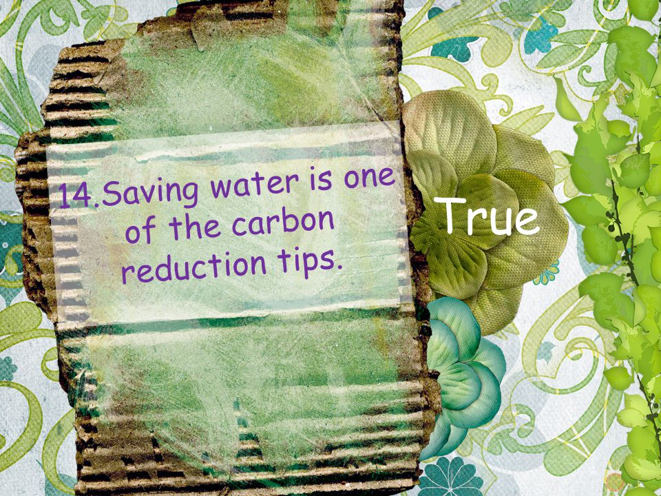 14.Saving water is one of the carbon reduction tips. True