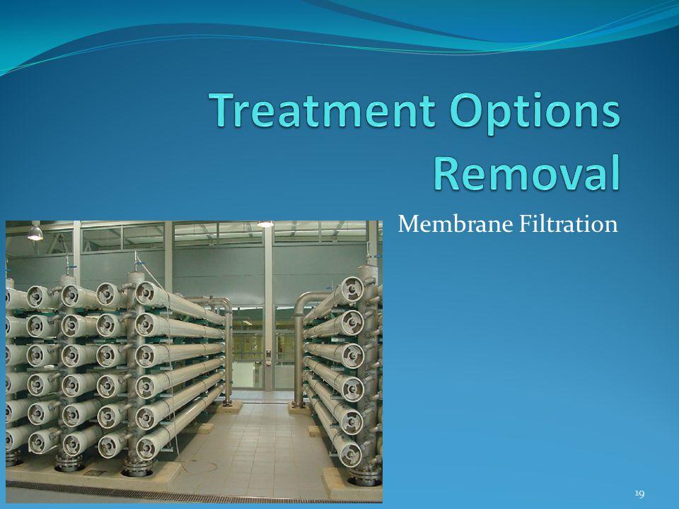 Membrane Filtration 19