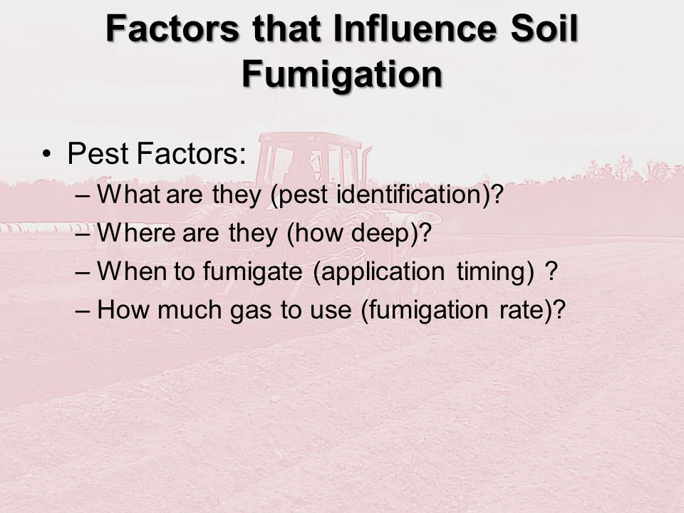 Factors that Influence Soil Fumigation Pest Factors: –What are they (pest identification)? –Where are they (how deep)? –When to fumigate (application