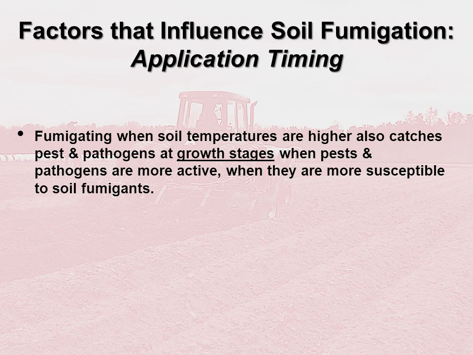 Fumigating when soil temperatures are higher also catches pest & pathogens at growth stages when pests & pathogens are more active, when they are more