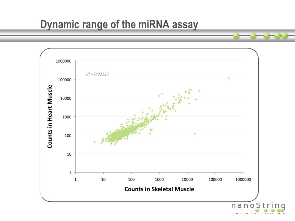 Dynamic range of the miRNA assay