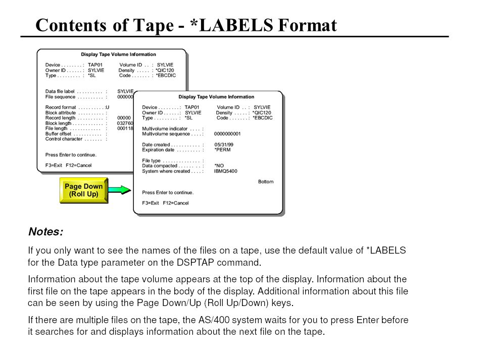 Contents of Tape - *LABELS Format
