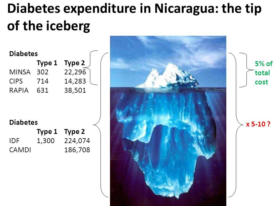 Diabetes Type 1Type 2 MINSA30222,296 CIPS71414,283 RAPIA63138,501 Diabetes Type 1Type 2 IDF1,300224,074 CAMDI186,708 5% of total cost x 5-10 .