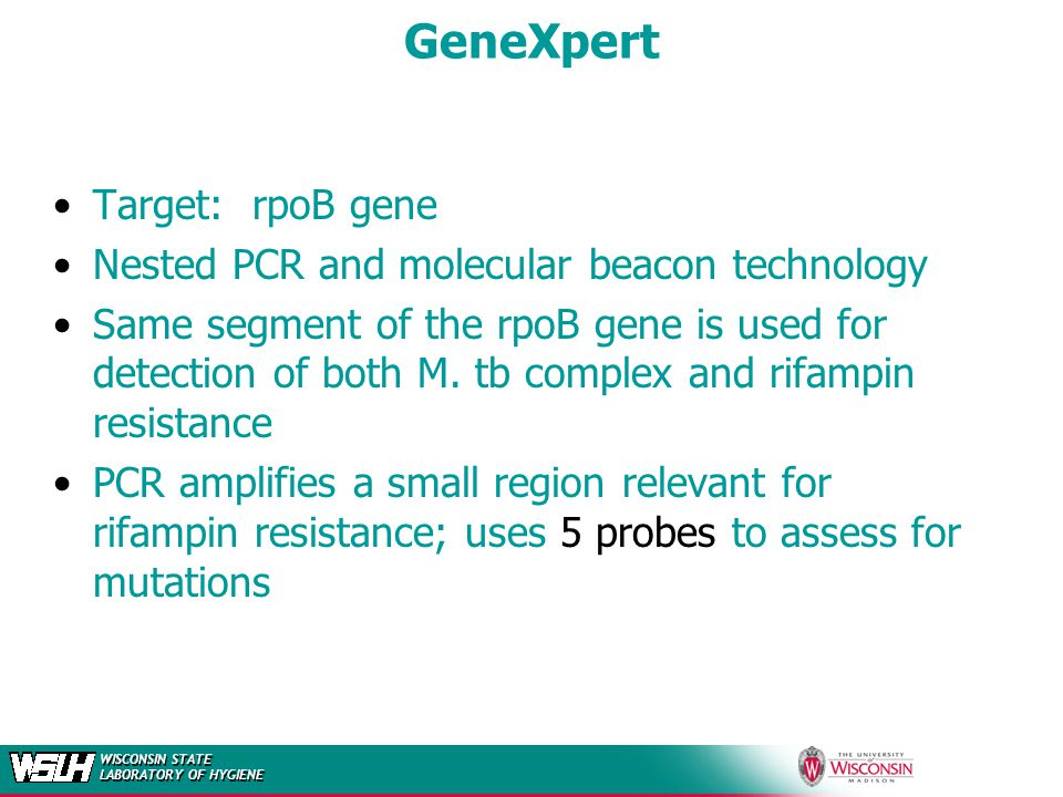 WISCONSIN STATE LABORATORY OF HYGIENE GeneXpert Target: rpoB gene Nested PCR and molecular beacon technology Same segment of the rpoB gene is used for