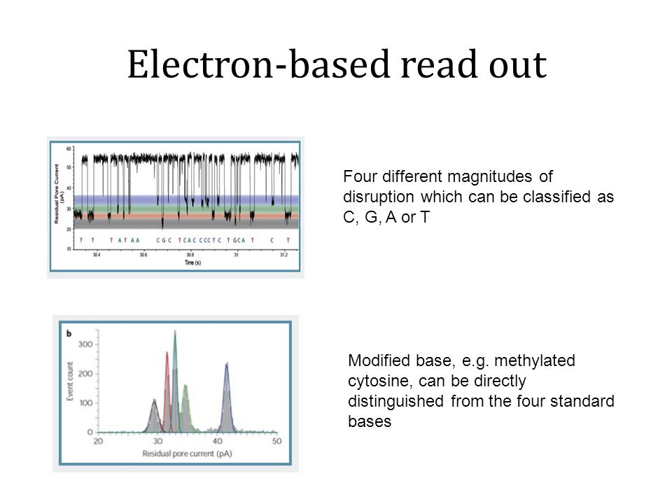 Strand Sequencing Snapshot from movie at http://www.nanoporetech.com Hairpin structure: Sense and anti-sense sequencing Advantages in Data Analysis