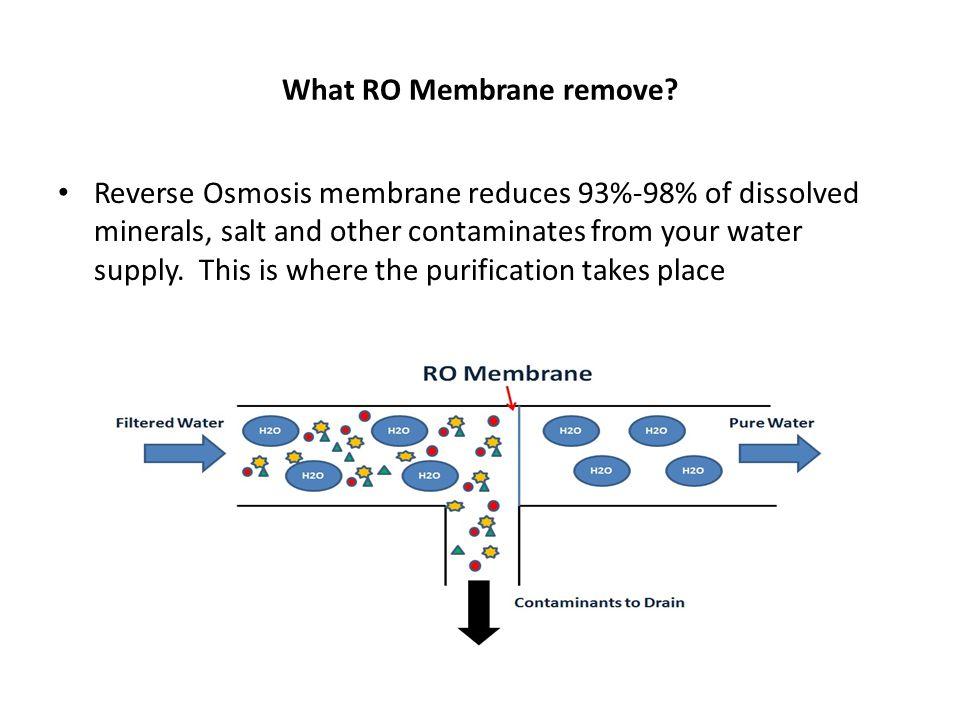 What RO Membrane remove.