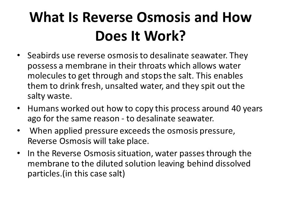What Is Reverse Osmosis and How Does It Work.Seabirds use reverse osmosis to desalinate seawater.