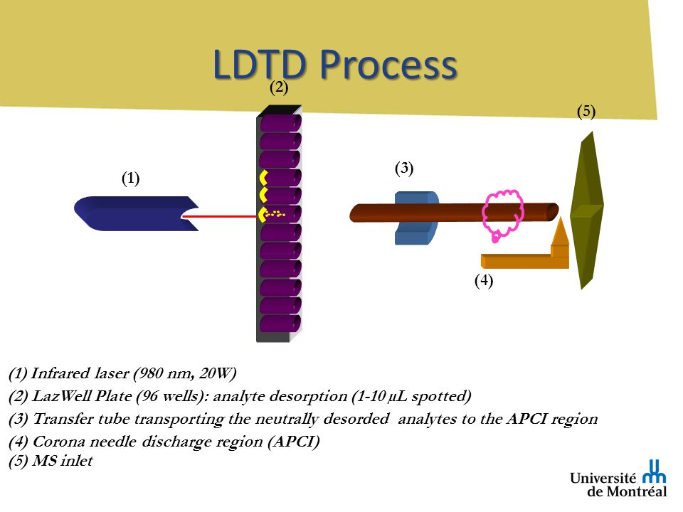 LDTD Process (1) Infrared laser (980 nm, 20W) (2) LazWell Plate (96 wells): analyte desorption (1-10 µL spotted) (3) Transfer tube transporting the neutrally desorded analytes to the APCI region (4) Corona needle discharge region (APCI) (5) MS inlet (1) (2) (3) (4) (5)