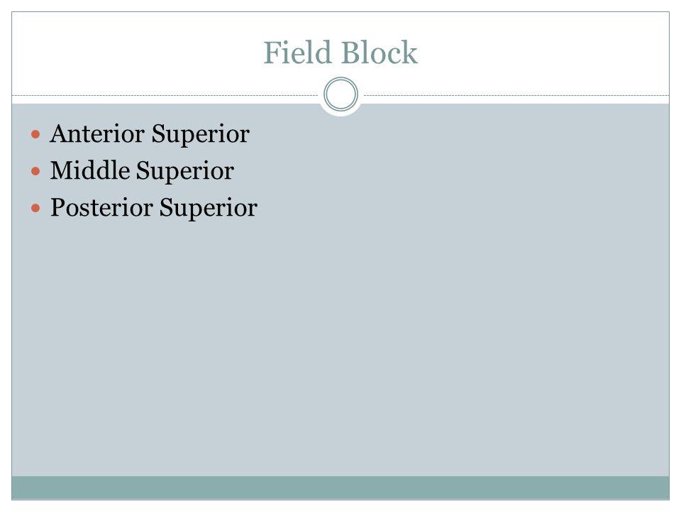 Field Block Anterior Superior Middle Superior Posterior Superior