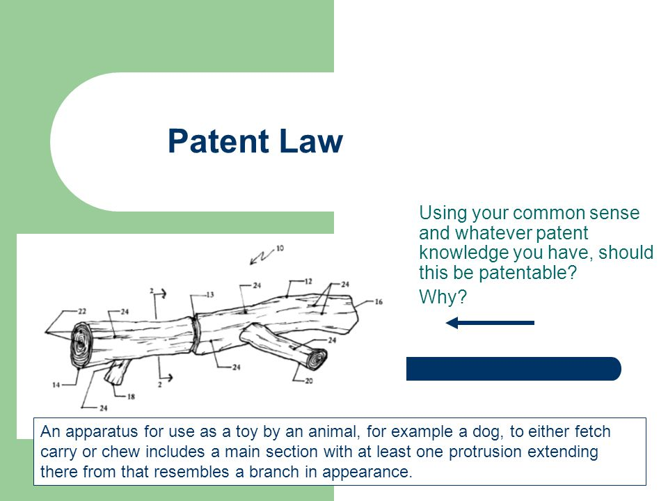 Patent Law Using your common sense and whatever patent knowledge you have, should this be patentable.
