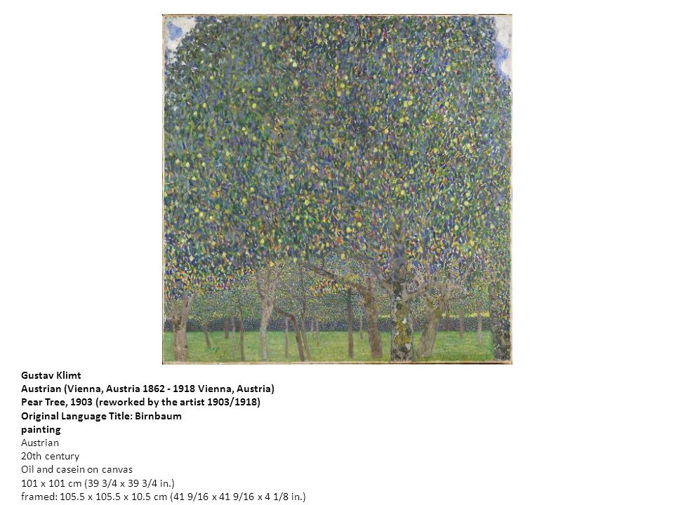 Gustav Klimt Austrian (Vienna, Austria 1862 - 1918 Vienna, Austria) Pear Tree, 1903 (reworked by the artist 1903/1918) Original Language Title: Birnbaum painting Austrian 20th century Oil and casein on canvas 101 x 101 cm (39 3/4 x 39 3/4 in.) framed: 105.5 x 105.5 x 10.5 cm (41 9/16 x 41 9/16 x 4 1/8 in.) Harvard Art Museums/Busch-Reisinger Museum, Gift of Otto Kallir BR66.4 Busch-Reisinger Museum, Division of European and American Art