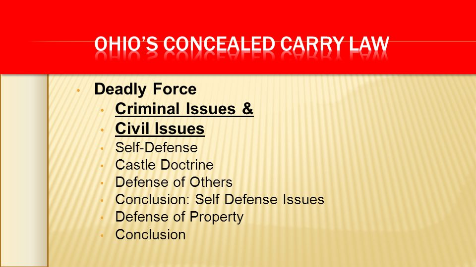 Deadly Force Criminal Issues & Civil Issues Self-Defense Castle Doctrine Defense of Others Conclusion: Self Defense Issues Defense of Property Conclus